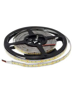 Optonica LED Strip 2835 196L/M 24V 12mm 20W/M 2100M/M White Lights